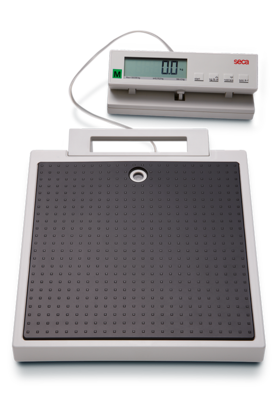 seca 899 - Flat scale with cabled remote display #1