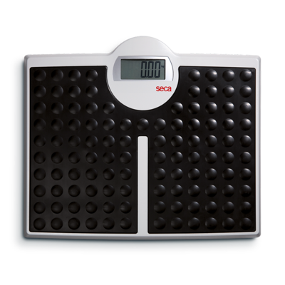 seca 813 - High capacity digital flat scale for individual use #0
