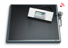 seca 635 - Platform and bariatric scale